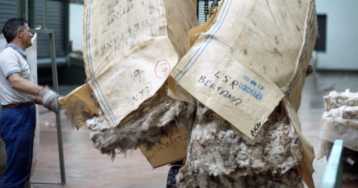 Pettinatura Di Verrone Opening of Bales 1200x800